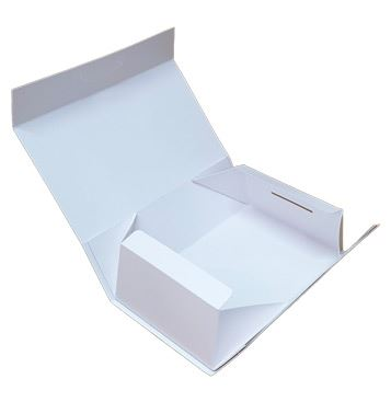 food delivery packaging boxes manufacturer in Delhi